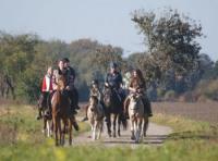 Pferdehof Rohnstock: Wanderreitstation und Urlaub mit eigenem Pferd in der Dahlener Heide in Sachsen