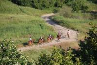 Reitzentrum Husar: Reiturlaub in den Karpaten, Rumänien, in den wildesten Gebieten Europas
