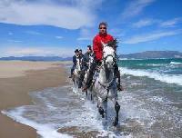 Panorama-Trails - auf Andalusiern durch das schöne Katalonien - Wanderritte der besonderen Art!