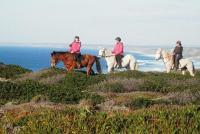 Horse Adventure Tours - Reittouren im Naturschutzgebiet der Costa Vicentina, West-Algarve, Portugal