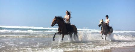 Horse Adventure Tours in Vale da telha, Aljezur / Algarve
