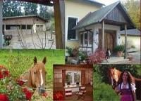 Reiterferien Urlaub mit Pferden Wanderreiten in der fränkischen Schweiz, Bayern!
