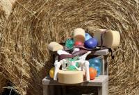 Poggio della Spinosa - Klassisches Reiten in der Toskana auf selbstgezogenen Maremma Pferden