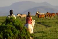 Ecotura - Reiturlaub im Peneda Gerês National Park - Reiten in Portugal!