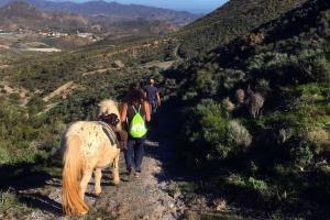 Tagestour durch die Berge