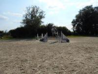 Les Ecuries du Peuplier - Reitferien in Hannut, Belgien für max. 10 Kinder von 8-14 Jahren!