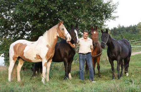 Ausbildungsbetrieb, Reiterhof, Ponyhof in Dasing