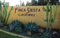 Reiterurlaub in Spanien an der Costa del Sol auf der Finca Siesta, Andalusien