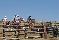 The Ponderosa Ranch - Die Gelegenheit Cowboy für einen Tag oder eine Woche zu sein.