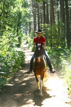 equus-via  in Oer Erkenschwick / Nordrhein-Westfalen