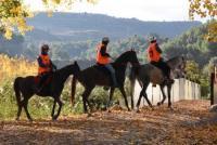 Endurance 365 - Maßgeschneiderte Reitferien für den Reitsport-Abenteurer - Valencia, Spanien
