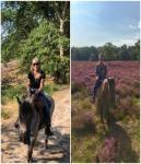 Wanderreiten Leide - Reiturlaub im Bergischen Land - Entschleunigung zu Pferd und Maultier
