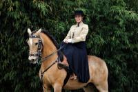 Reiterferien auf dem Iberer-Hof Equiberique im Elsass in Frankreich im Universum iberischer Pferde!