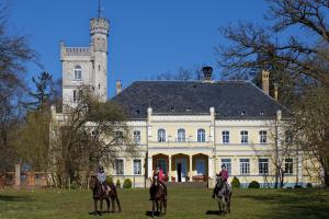 Das Schloss und unsere Pferde