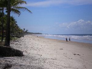 Strandansicht  gegen Norden (7 Km)