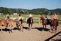 Tolle Reiterferien am Rhein auf dem Georgienhof zwischen Bonn & Koblenz für Mädchen ab 8 Jahren