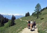 Reiten im Ferienhotel Gut Enghagen in Rossleithen, Oberösterreich, im Nationalpark Kalkalpen