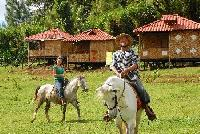 Finca Neblina del Bosque - Reiturlaub in Nicaragua - Reiten in Nicaragua!