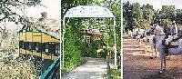 Reiterferien für kleine und große Gäste auf dem Lipizzanergestüt im Weinviertel in Retz/NÖ