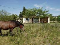 Urlaub in Frankreich für 1-2 Personen mit eigenem Pferd in der kleinen Camargue!