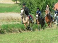 Reiterferien,Reitwochen für Kinder und Jugendliche von 8 bis 18 am Aicherhof in Oberösterreich