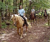 Reiturlaub in Pennsylvania - Geführte Wanderritte durch die Wälder der Pocono Mountains