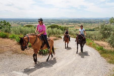 Ferien-/ Urlaubsbetrieb, Wanderreitstation, Bauernhof, Reiterhof in Cortona