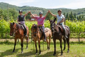 Bild 2 von Weingut & Wanderreitbetrieb