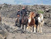 Reiturlaub in Island - im faszinierenden Tölt die Natur erleben - Urlaub auf Herridarholi