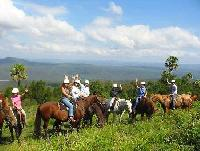 The Man from Kangaroo Valley Trail Ride - Reiten in Australien!