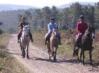 Reiten nahe Gois im grünen Herzen von Zentral-Portugal!