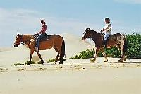 Reiten für Jedermann auf den Sahara Trails in Port Stephans/Australien