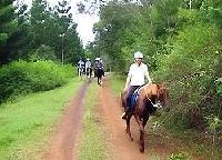 Geführte Reittouren durch Queensland in Australien