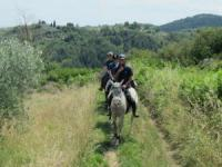 Reitferien vom Feinsten in komfortabler Ferienwohnung im Herzen der Toscana auf  'Podere Le Baruti'.