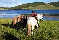 Der Norden der Mongolei : eine grandiose Naturlandschaft zu Pferd entdecken