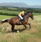Reiturlaub in Neuseeland auf der Kowhai Farm
