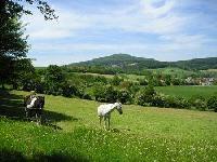 ArhönA - Natural Horsemanship in der hessischen Rhön zwischen Fulda und Bad Hersfeld