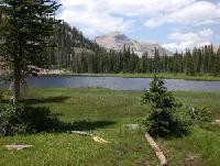 Flying J Outfitters - Wanderritte und Pack Trips in den High Uintah Mountains, im Nordosten Utahs!