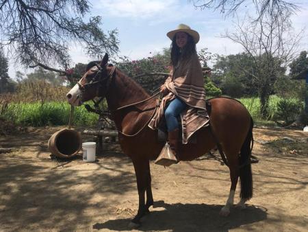 Rancho Santana in Chiclayo - Lambayeque / Alle Regionen