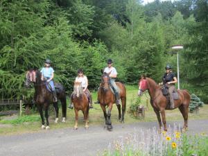 Wöchentliche Reisen zu Pferd