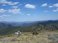Snowy Range Horseback Tours - der Reiturlaub Ihres Lebens in Victoria, Australien!