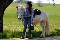 Reiterferien - für Anfänger geeignet -