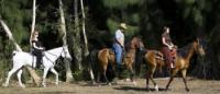 American Horse Trails -  Reiten in Süd-Florida im Südwesten von Broward County