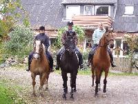 Reitferien, Kinderreitferien, Ausritte, Kutschfahrten auf DePeerhoff in Sönnebüll (Nordfriesland)