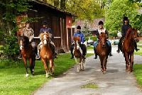 Reiterferien für Groß und Klein in der Lüneburger Heide