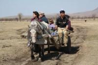 Anak Ranch - Reiten in dem bergigen Orkhon Valley in der rauhen Taigasteppe!