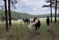 Reiterferien für Mädchen 6 bis 15 Jahre auf der Pferde und Ponyfarm Anne-K.Bendix Land Brandenburg