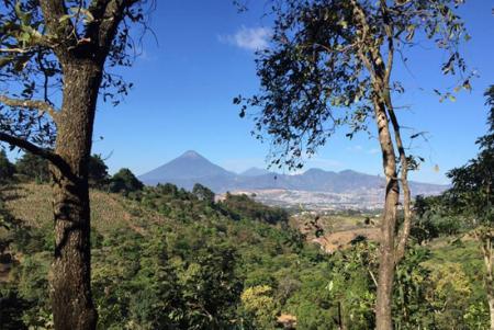 El Terreno in Guatemala / Alle Regionen