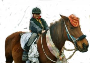 Spaß und Abenteuer mit dem Pferd