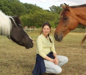 Objektbild Pferde 4